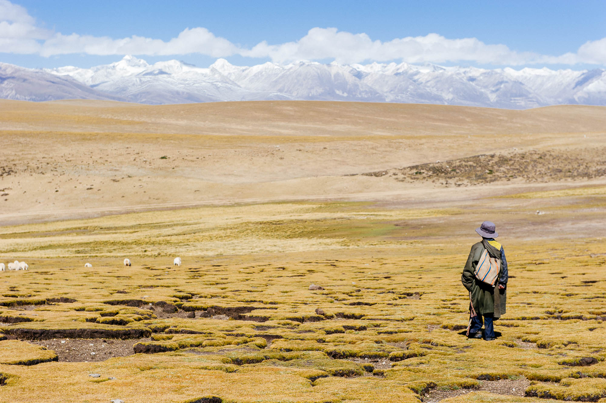 Nomad in Tibet