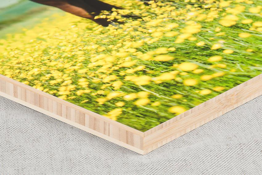 Simf-Bamboo-panel-LR-2.jpg