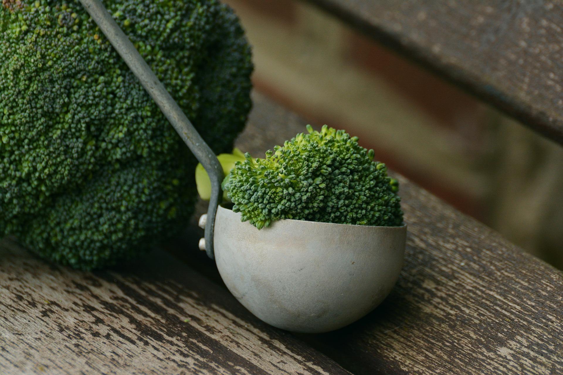 broccoli-1974801_1920.jpg