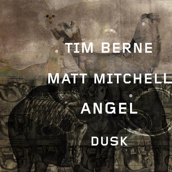 """Angel Dusk"" (2018, Screwgun Records)"