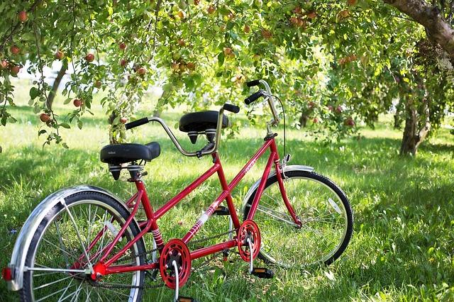 tandem-bike-905067_640.jpg