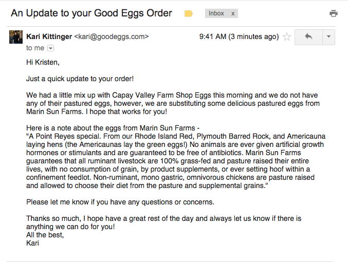 Original plaintext email written manually by customer service