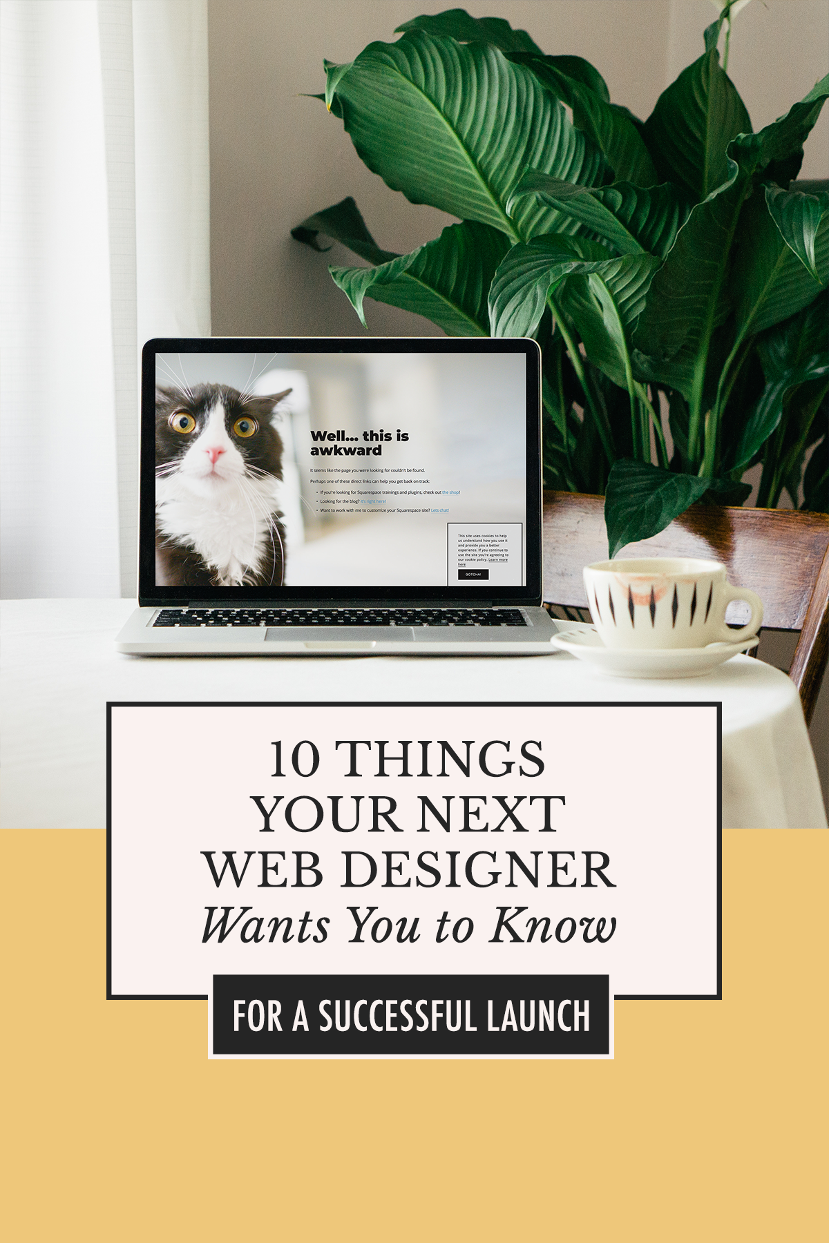Thinking of hiring a designer? Here are 10 ways to prep for your most successful website launch ever! | Alexis The Greek blog