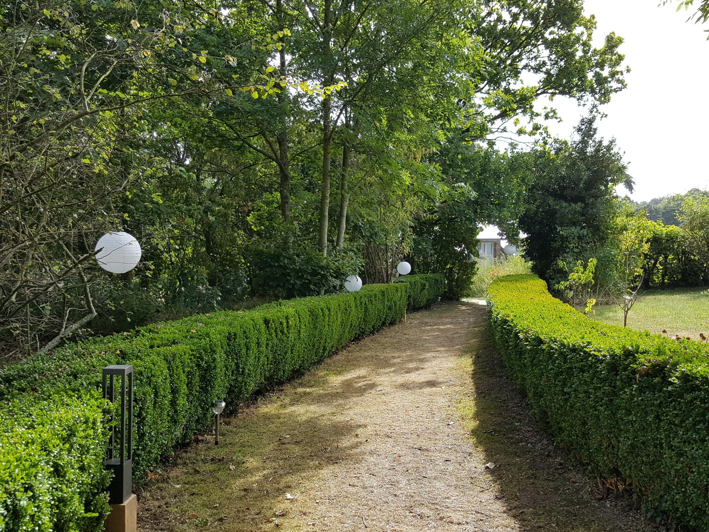 garden__la salle et ses décorations__20160903_112755_resized_1.jpg