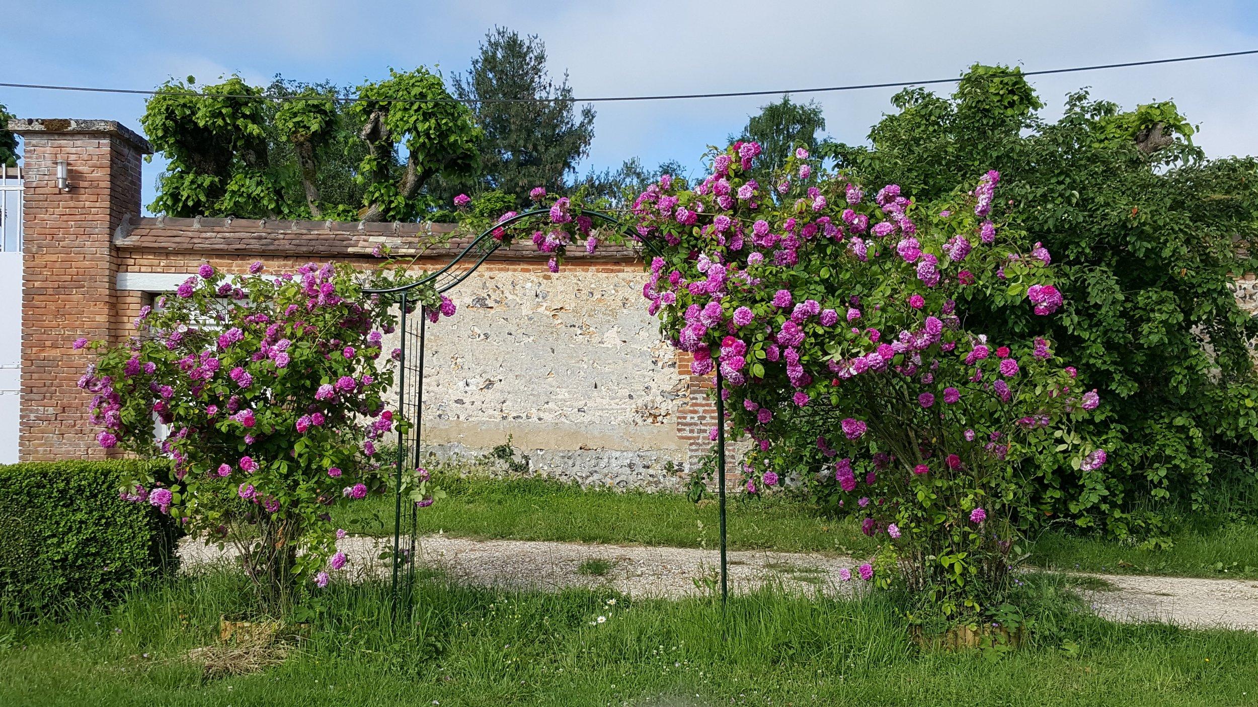 garden__la salle et ses décorations__20170531_091928_resized_1.jpg
