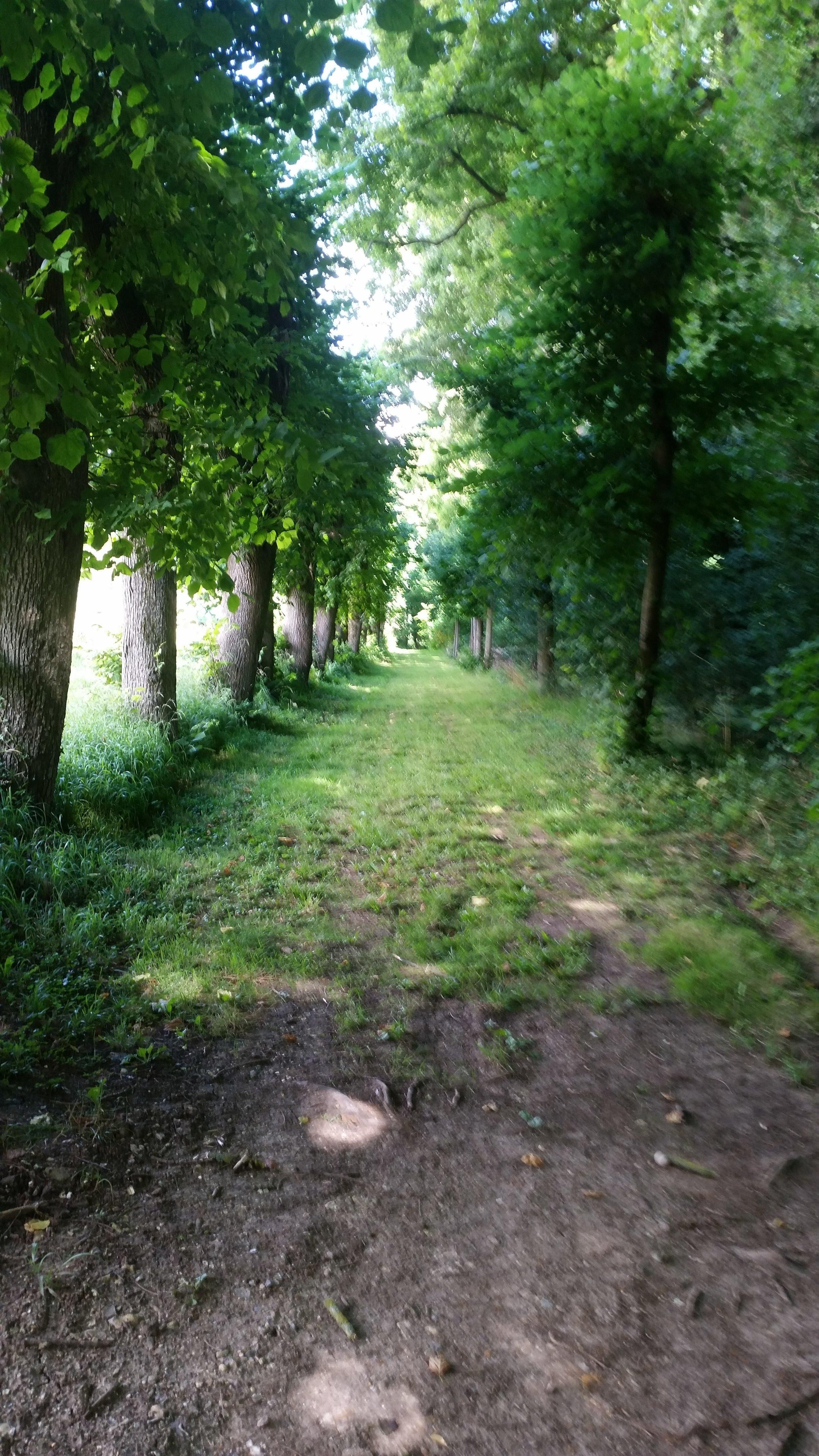 parc walk 20160717_113316.jpg