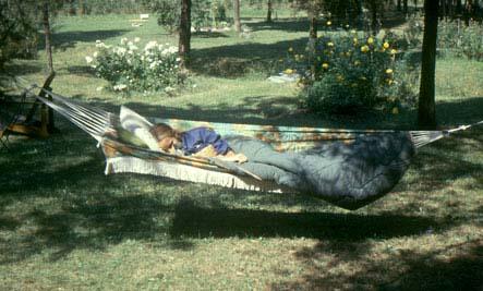 marti-hammock-443en