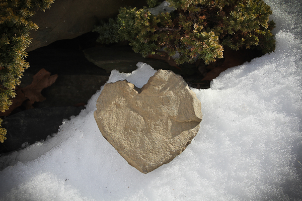 Rock found while snowshoeing with my honey after last week's snow storm.