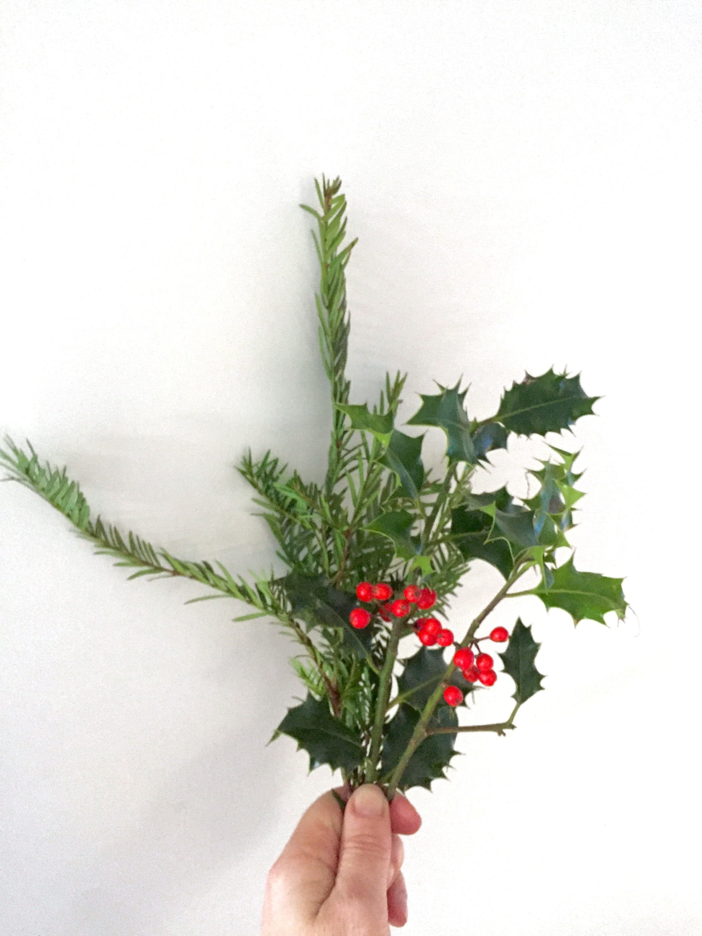 Home Trousseau Christmas Posy