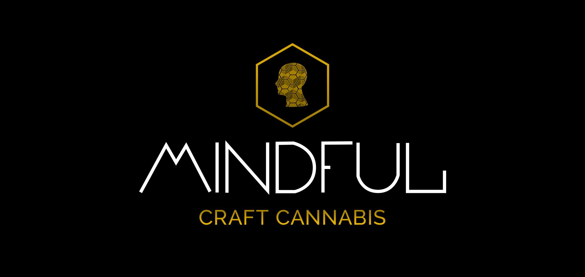 MindfulSplash.png