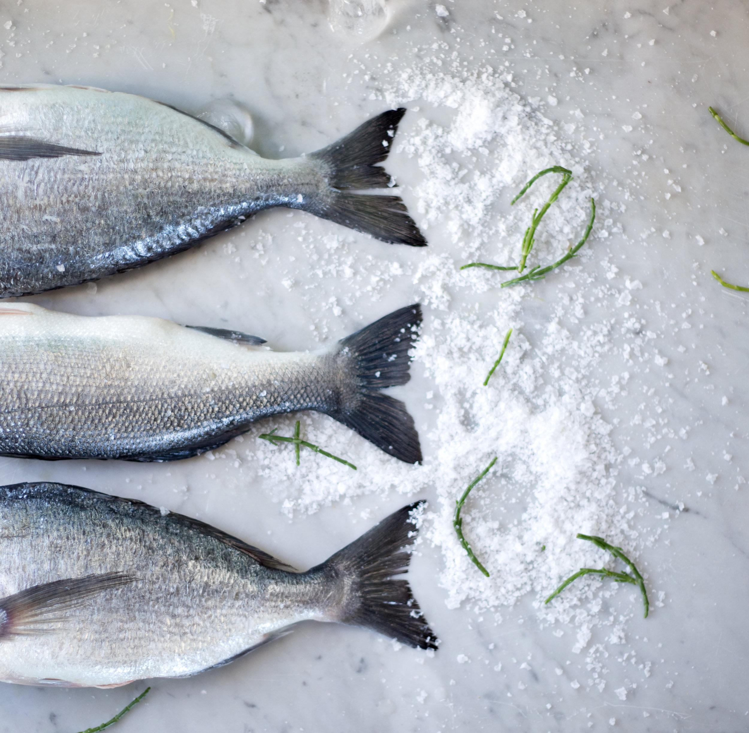 fish tails.jpg