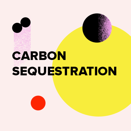 CarbonSequestration.png