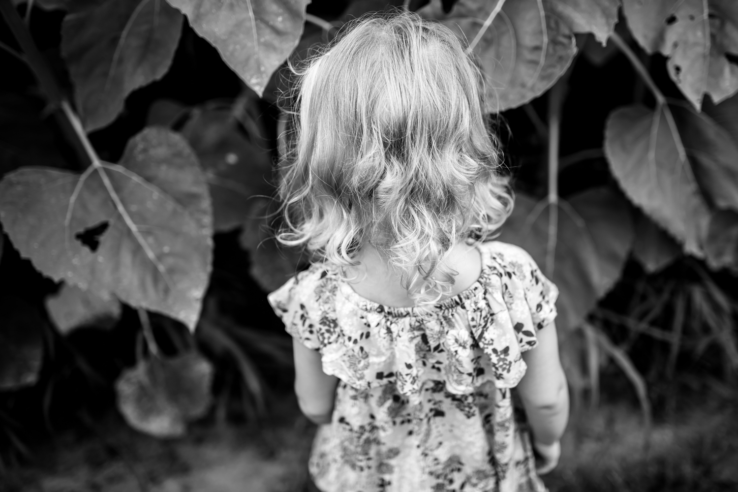 Indianapolis Family Photography 8