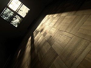 I just love this photo, the nice morning light on the freshly sanded floors. Kinda artsy. You can see how the floor is fresh, bare wood. It actually smelled very nice, like fresh cut trees; it has that pine tree smell.
