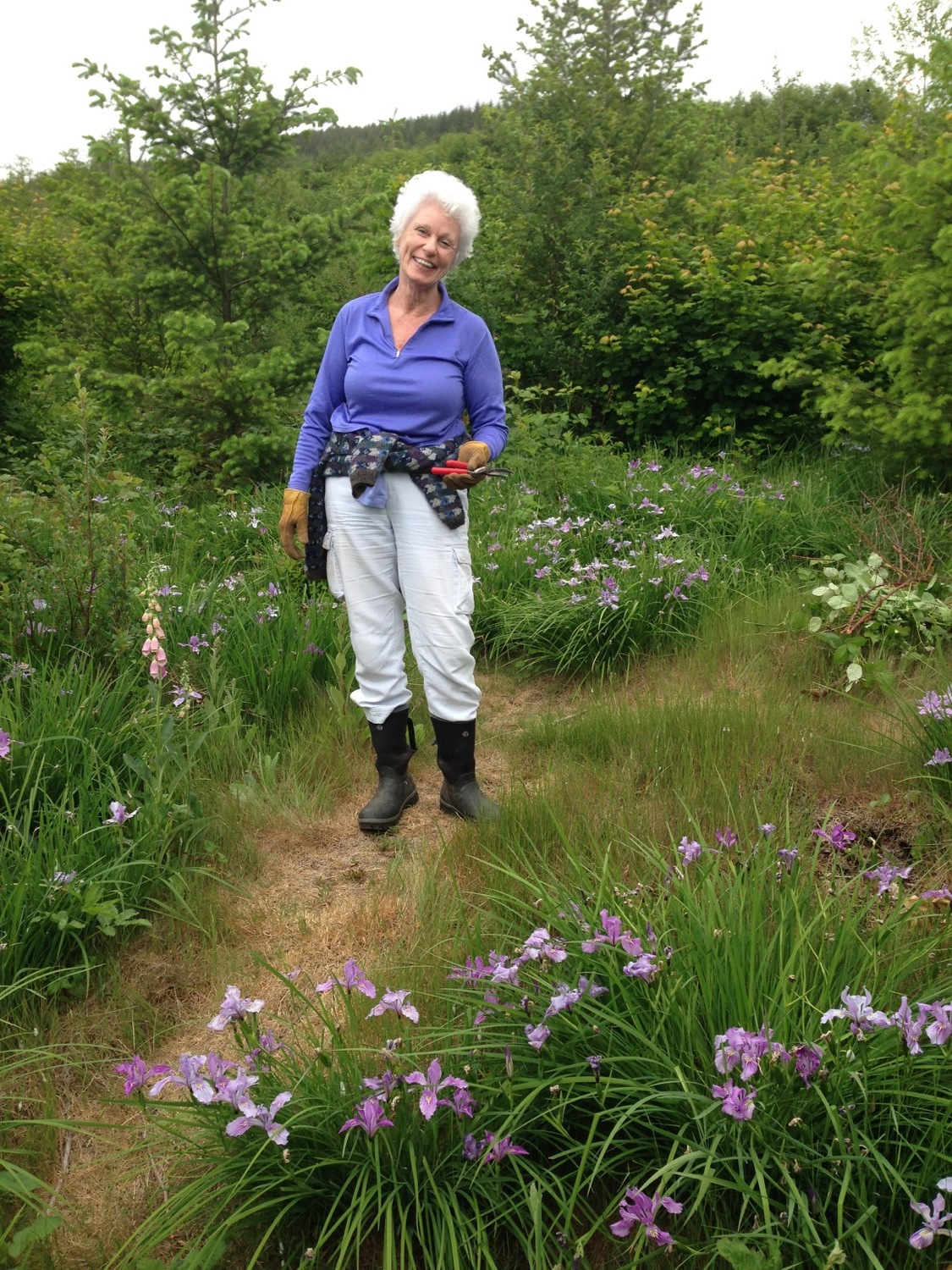 the_woods_2018_Mom_Elske_outstanding_in_her_field_of_iris.jpg