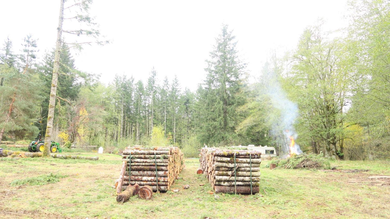 firewood aisles.JPG
