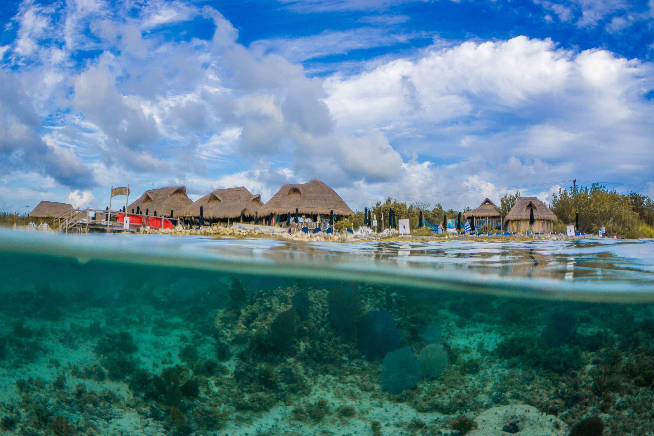 Cozumel underwater photography snorkeling half & half