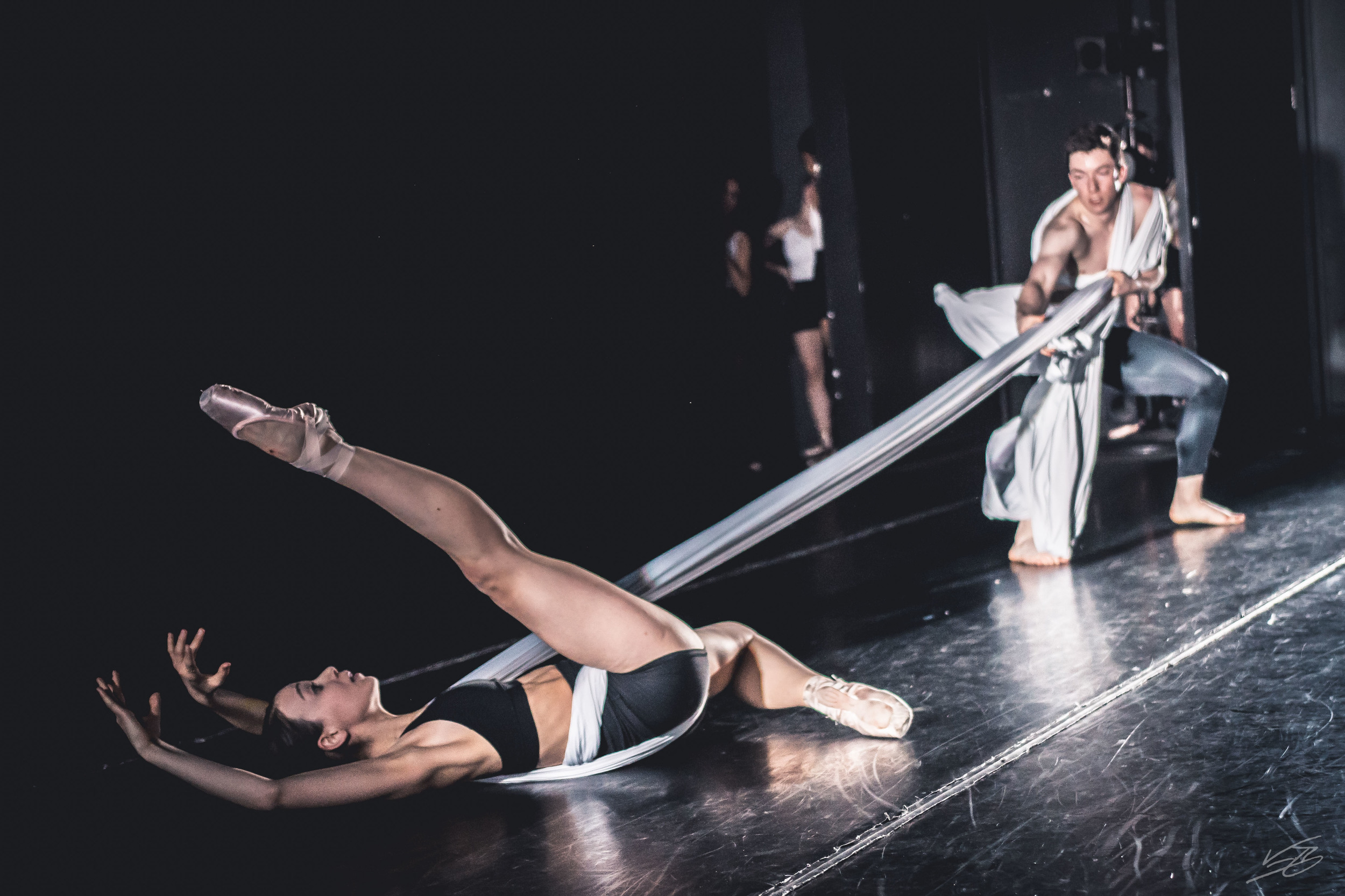Princeton University Ballet: Midsummer