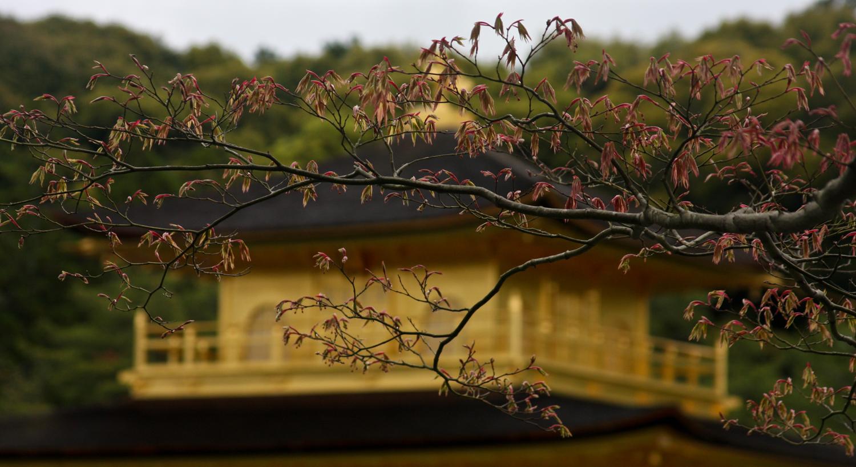 Kyoto, Japan, 2008