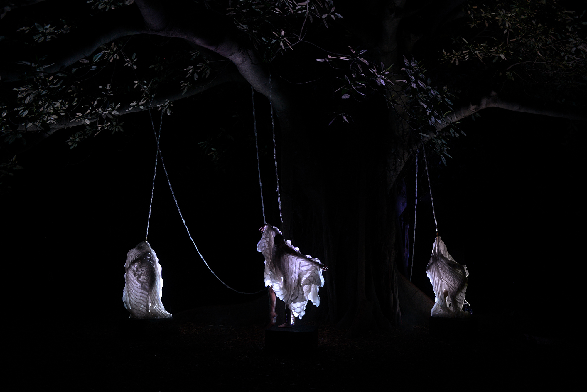 performer collaborators : Holly Durant, Samuel Hartnett-Welk & Lily Paskas l photography : Kathy Luu
