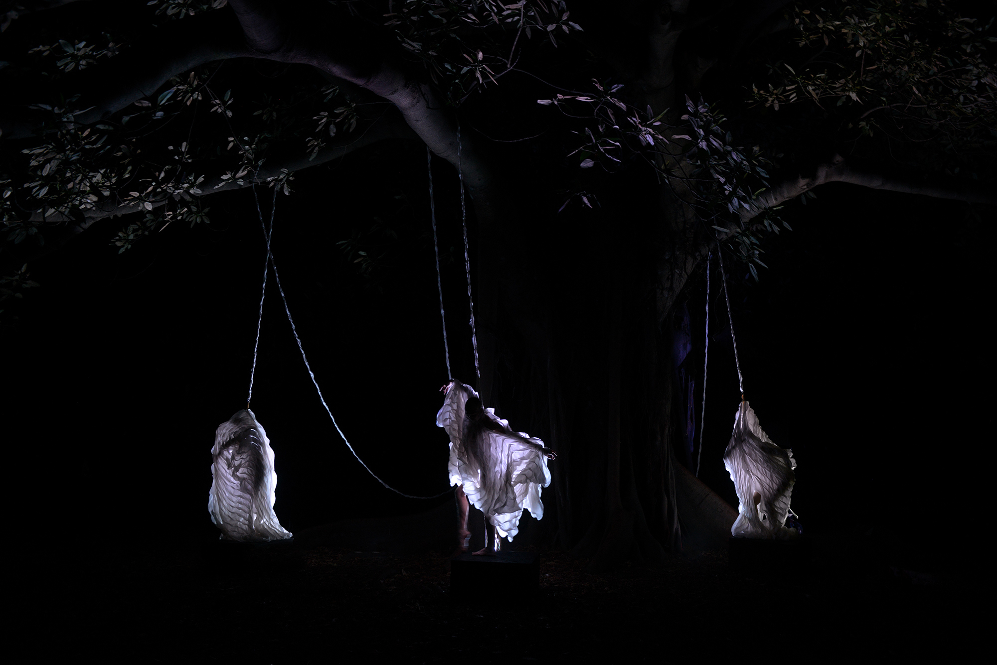 QUAM CHRYSALLIDEM (TREE ATTACHMENT) - a live art investigation of inhabitation :: VIVID Sydney 2018, Royal Botanic Gardens  silk; bonded thread; light  inhabitable sculptures Anastasia La Fey ; performer/ inhabitants LARVAE collaborator, Samuel Hartnett-Welk  and Holly Durant & Lily Paskas