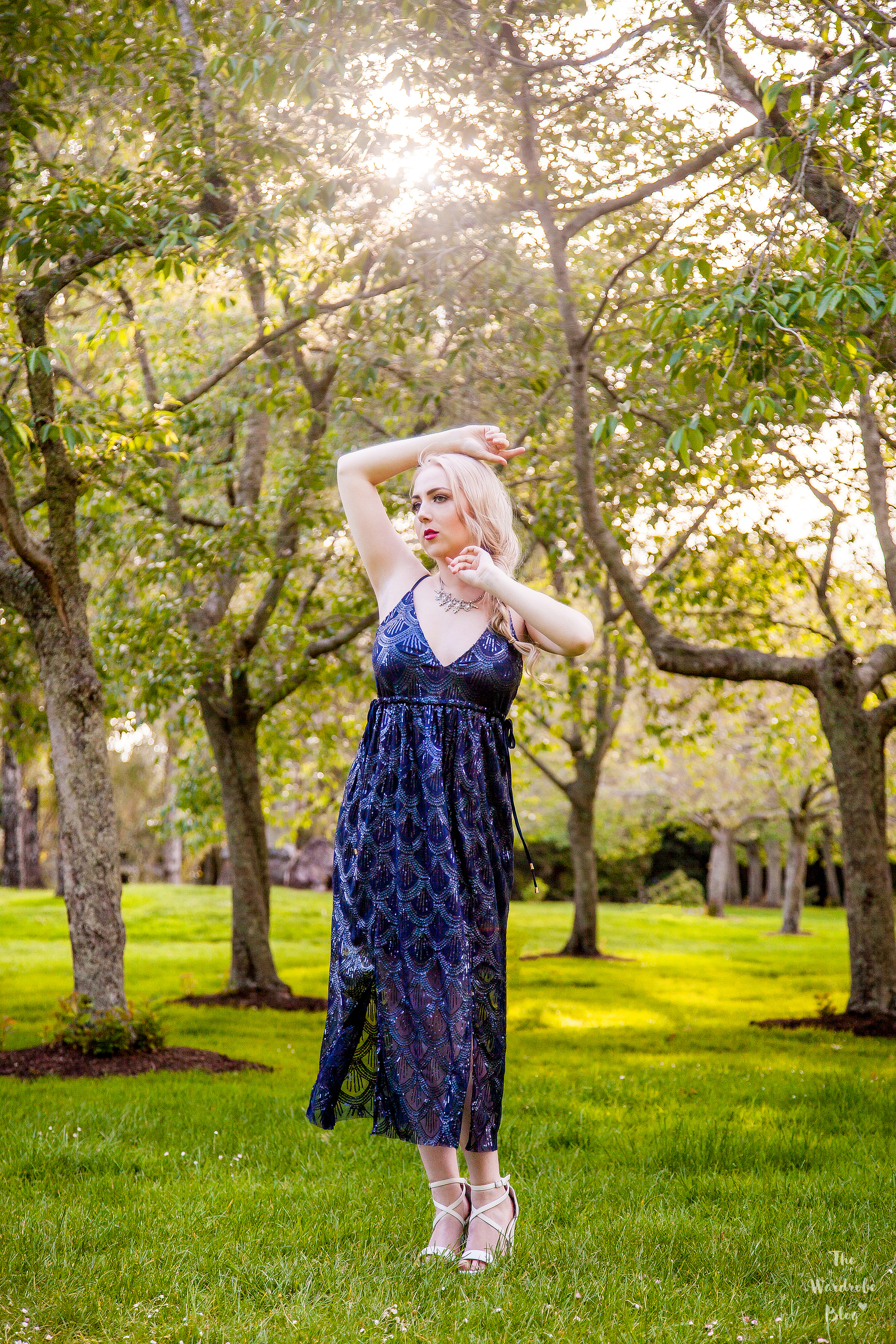 Pia-Boutique-Navy-Dress-Backlight