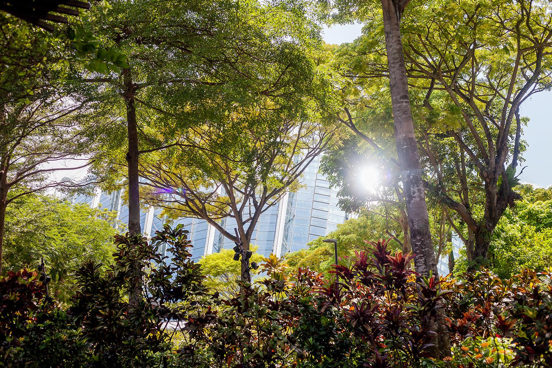 Singapore-Cityscape-Views