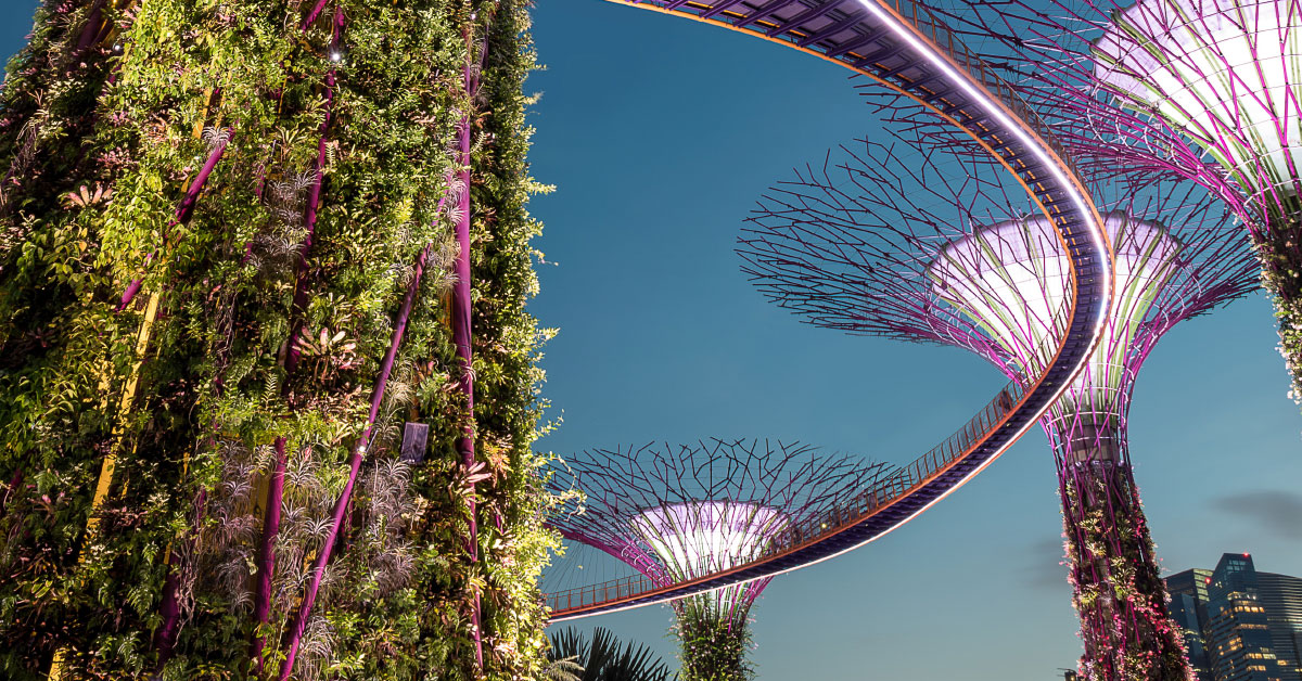 Singapore-Cruise-R.jpg