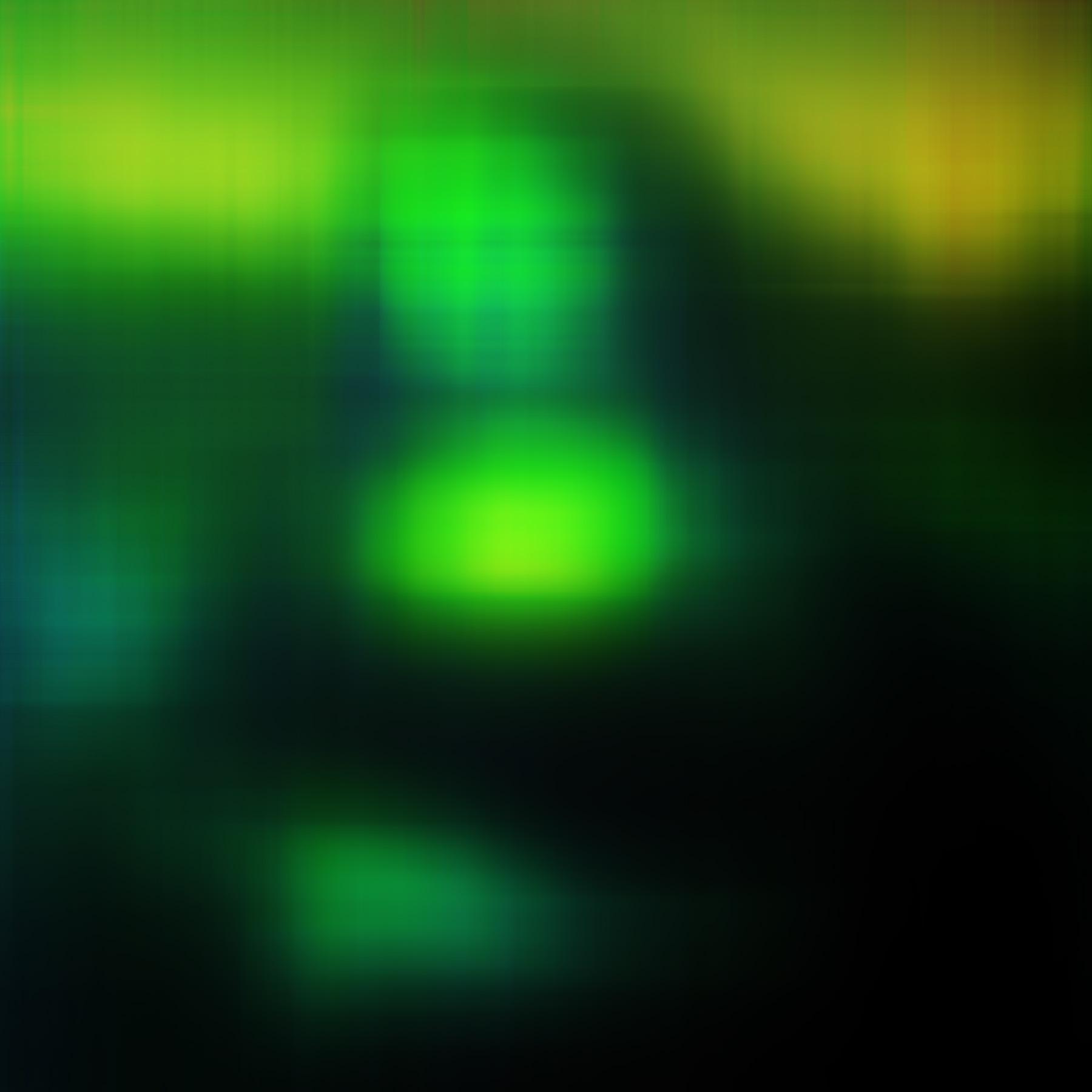Fat Green Mona