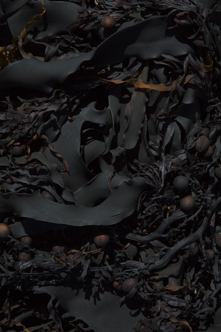 Blackweed - Matt