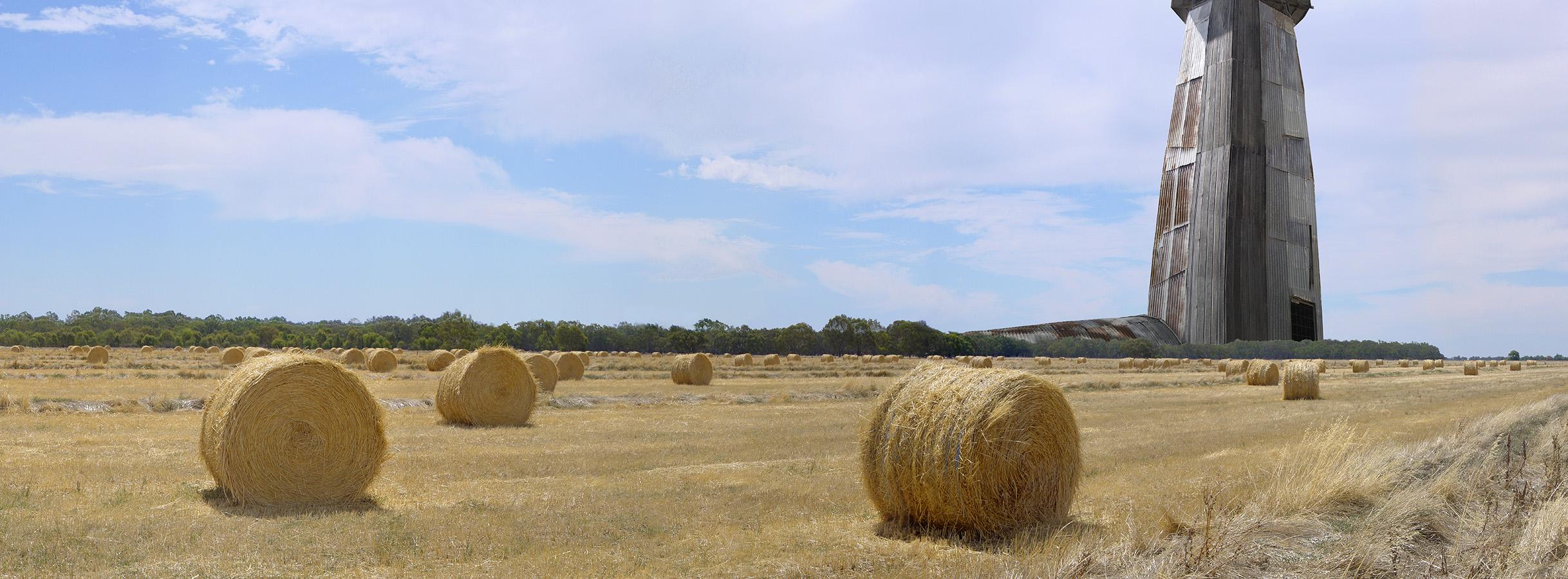 Agri-culture