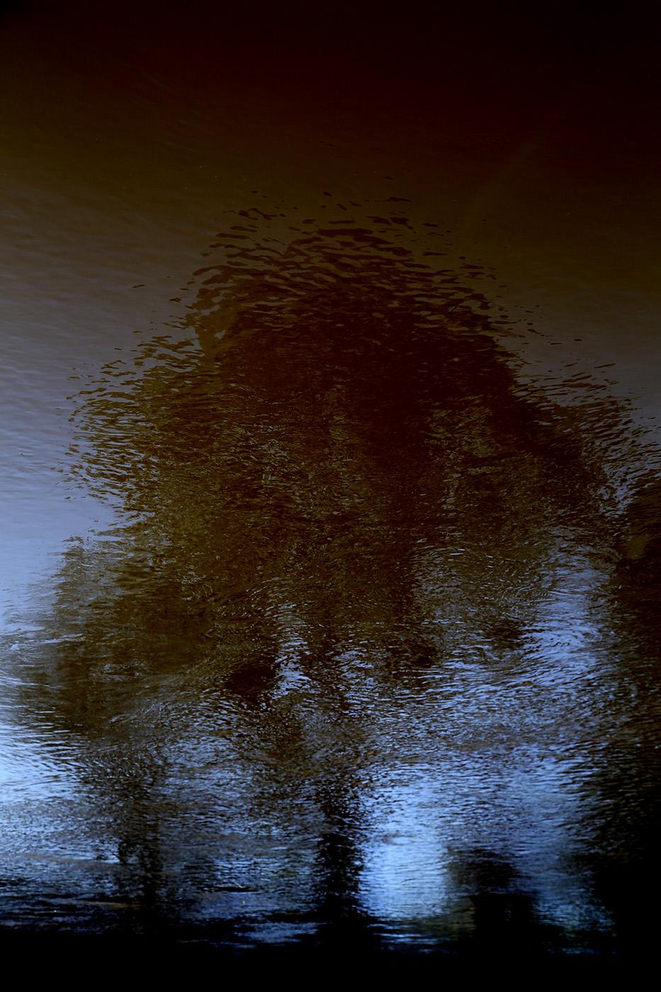 reflectedTree0720.jpg