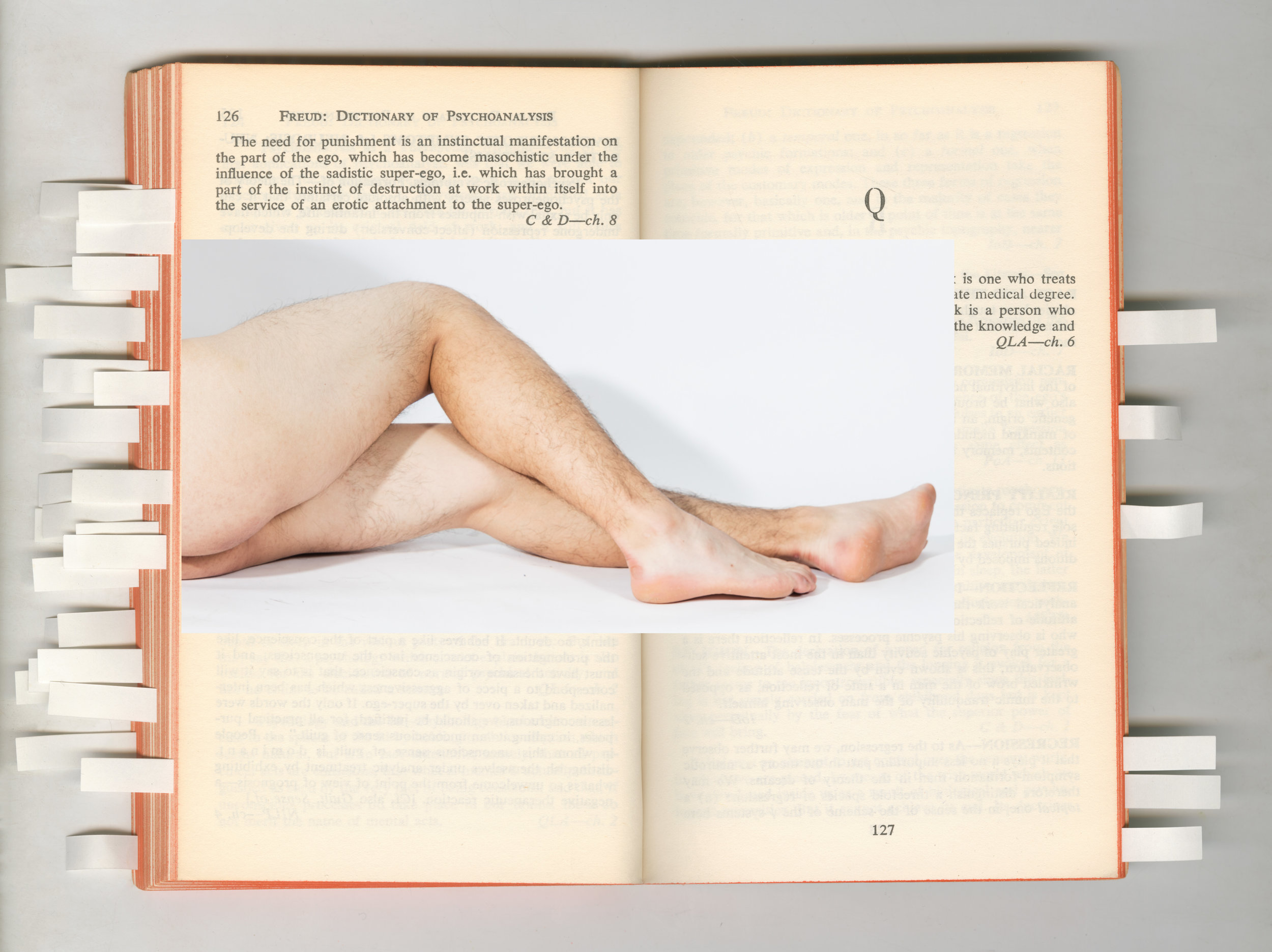 Freud_Q.jpg