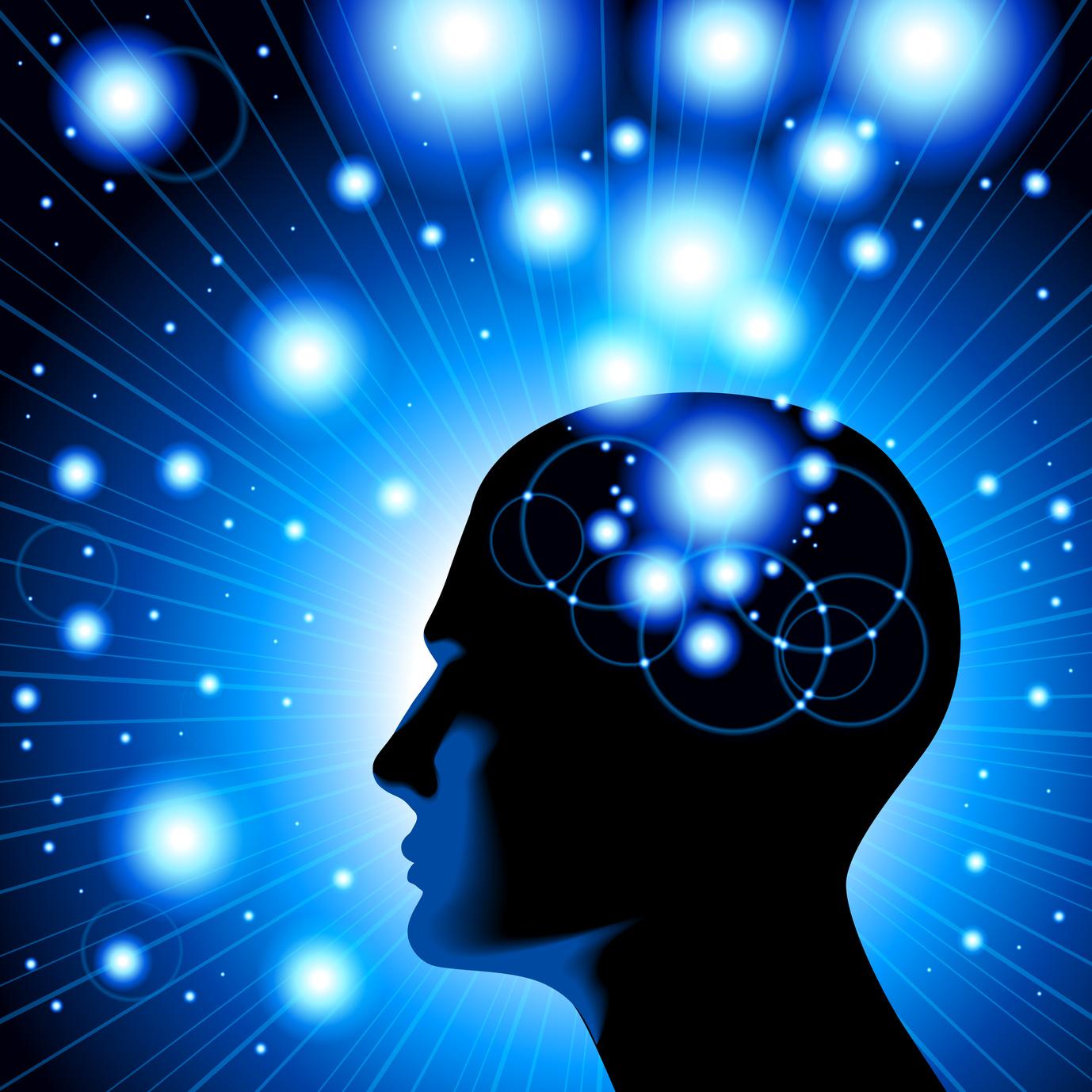 neurogenesisphoto