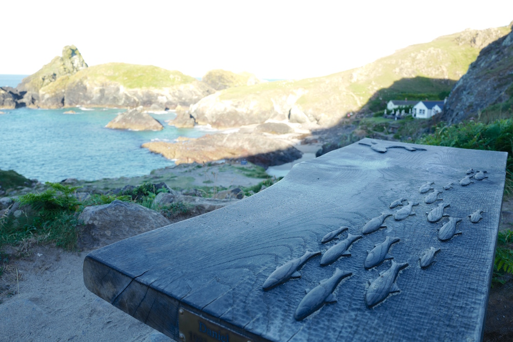 A view of Kynance Cove & cafe