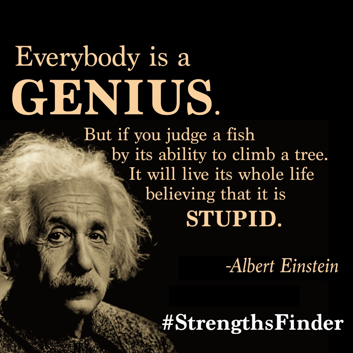 One of my all time favourite quotes that really show what #StrengthsFinder is all about. That when we start to see the #strengths and #talents in our colleagues and friends, we realise that there is more #genius than #stupid in the world.   #StrengthsSchool #qotd #strengthsquest