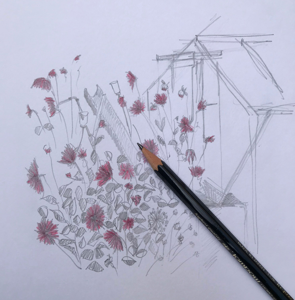 Drawing in the fading light