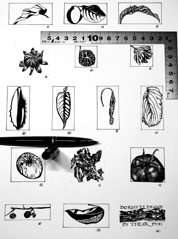Tiny allotment ink drawings