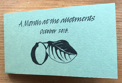 Cover of 'A Month at the allotments' artist's book