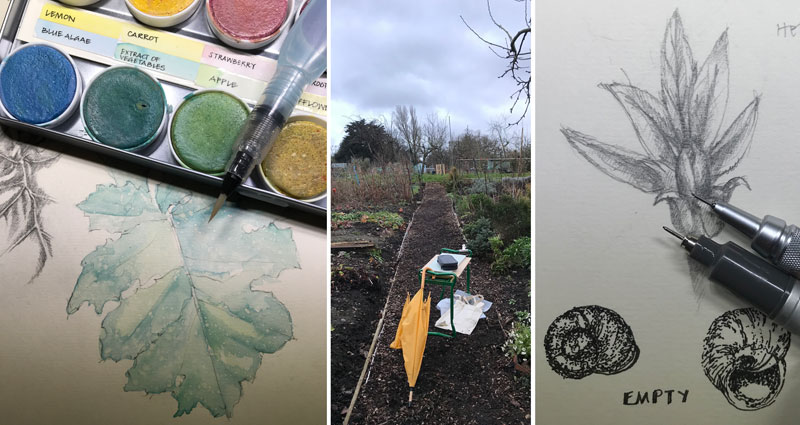 Leaves, bulbs, snails and the drawing perch