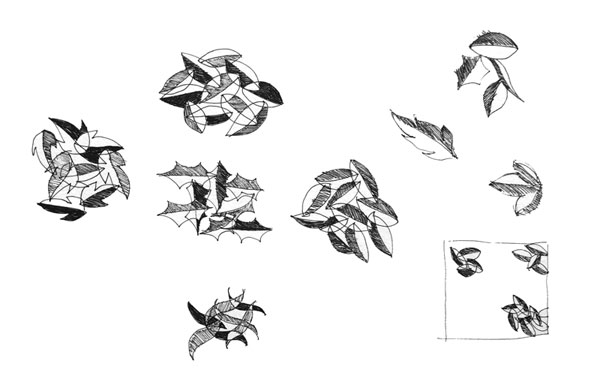 Playing with leaf patterns