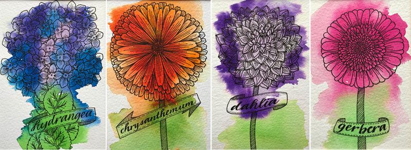 New flower drawings