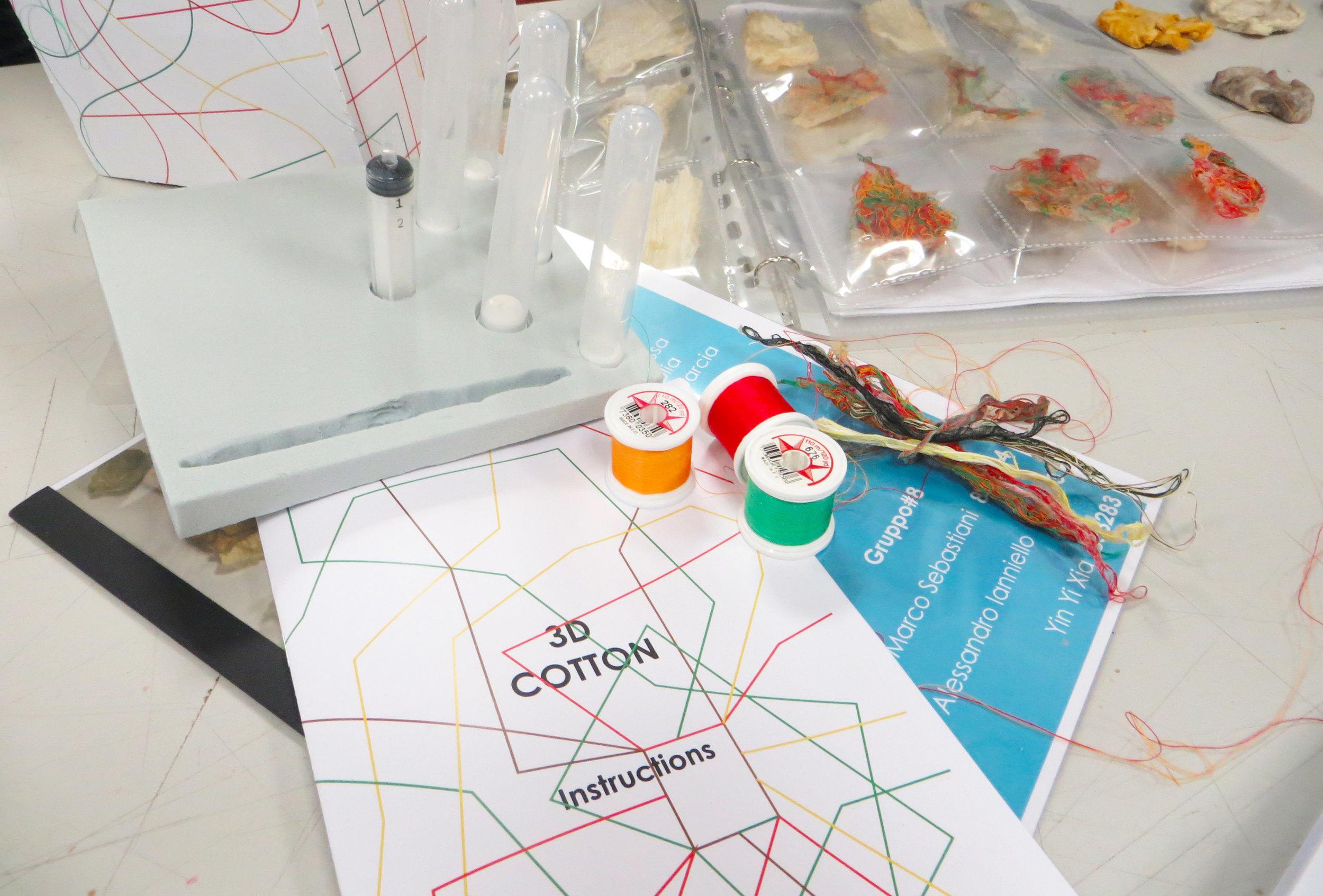 9. 3d cotton examday 3.JPG