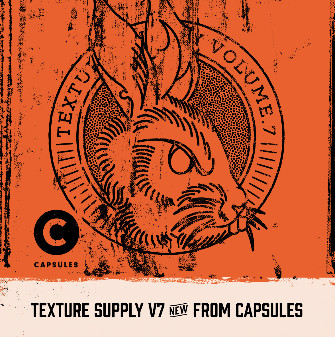 Texture Supply Volume.7