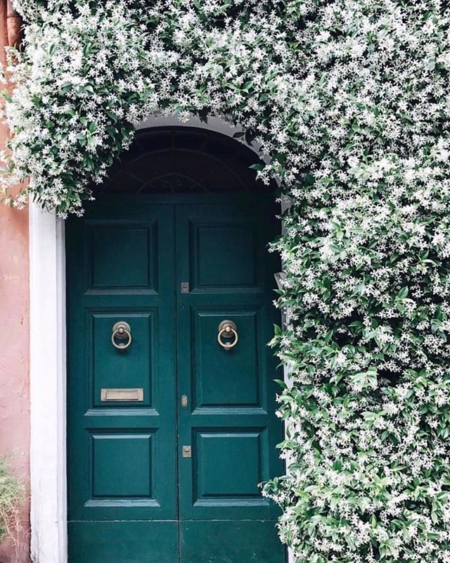 Traditional luscious entrance 🌳#statemententrance #classic #lushthis #wishlist #landscapedesign #interiordesign #interiorinspiration #interiordecorating #homedesign #brisbanebusiness  #brisbaneinteriors  #sohointeriors 📷 Pinterest