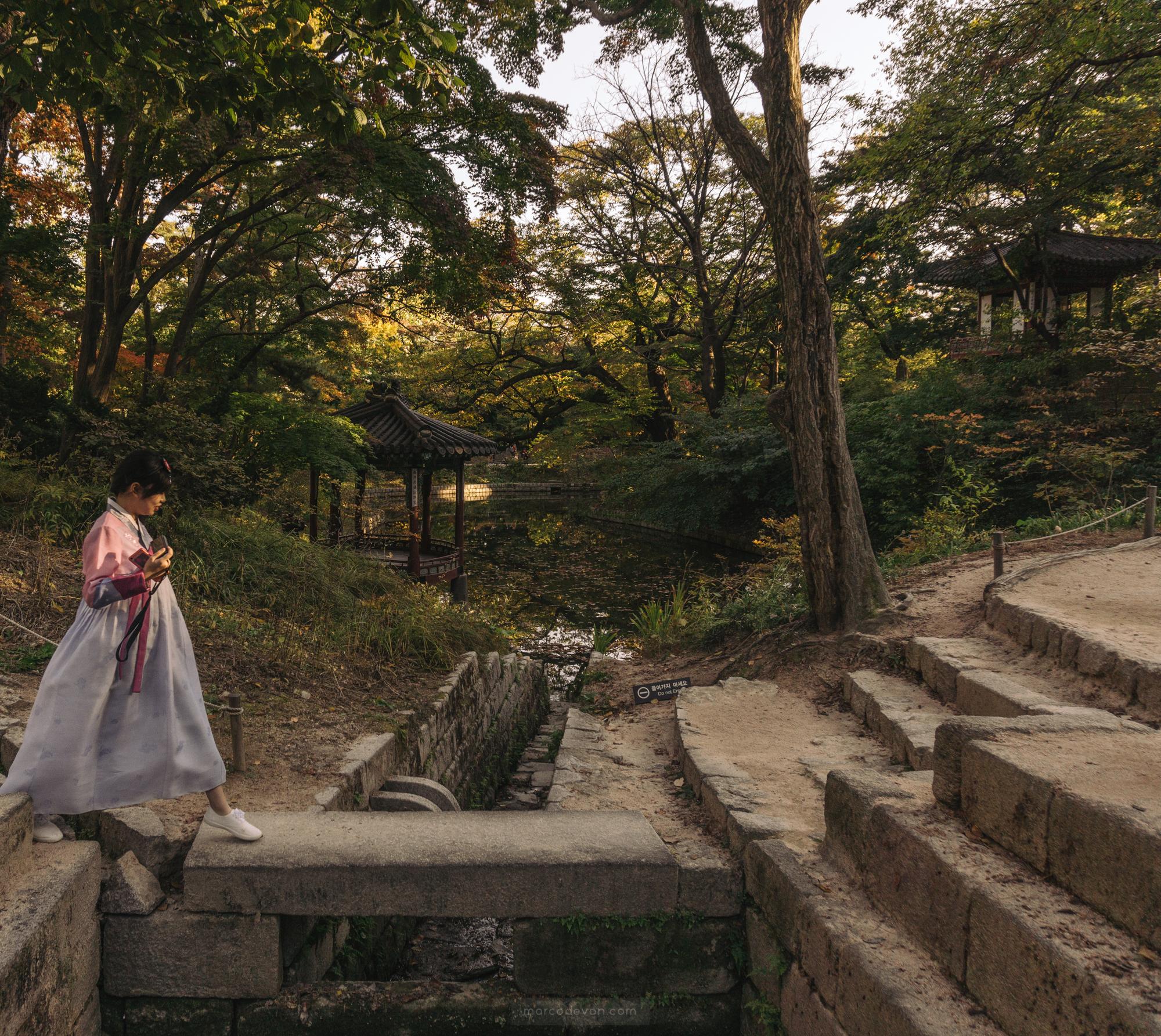 seoul photographer 09