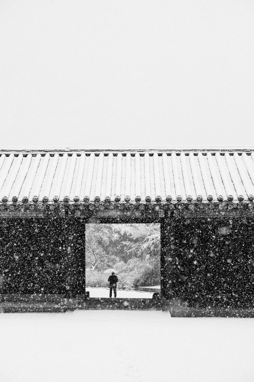 Seoul Photographer 04