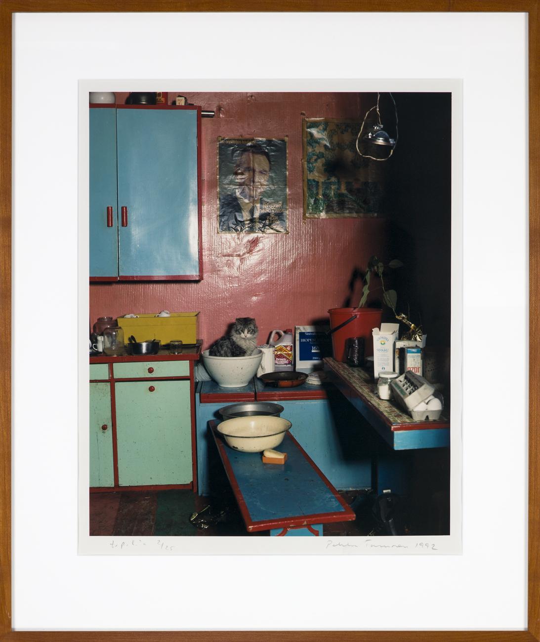 Pekka Turunen  En katt i en skål  1992 C-print, 2/25 45,5 x 37 cm