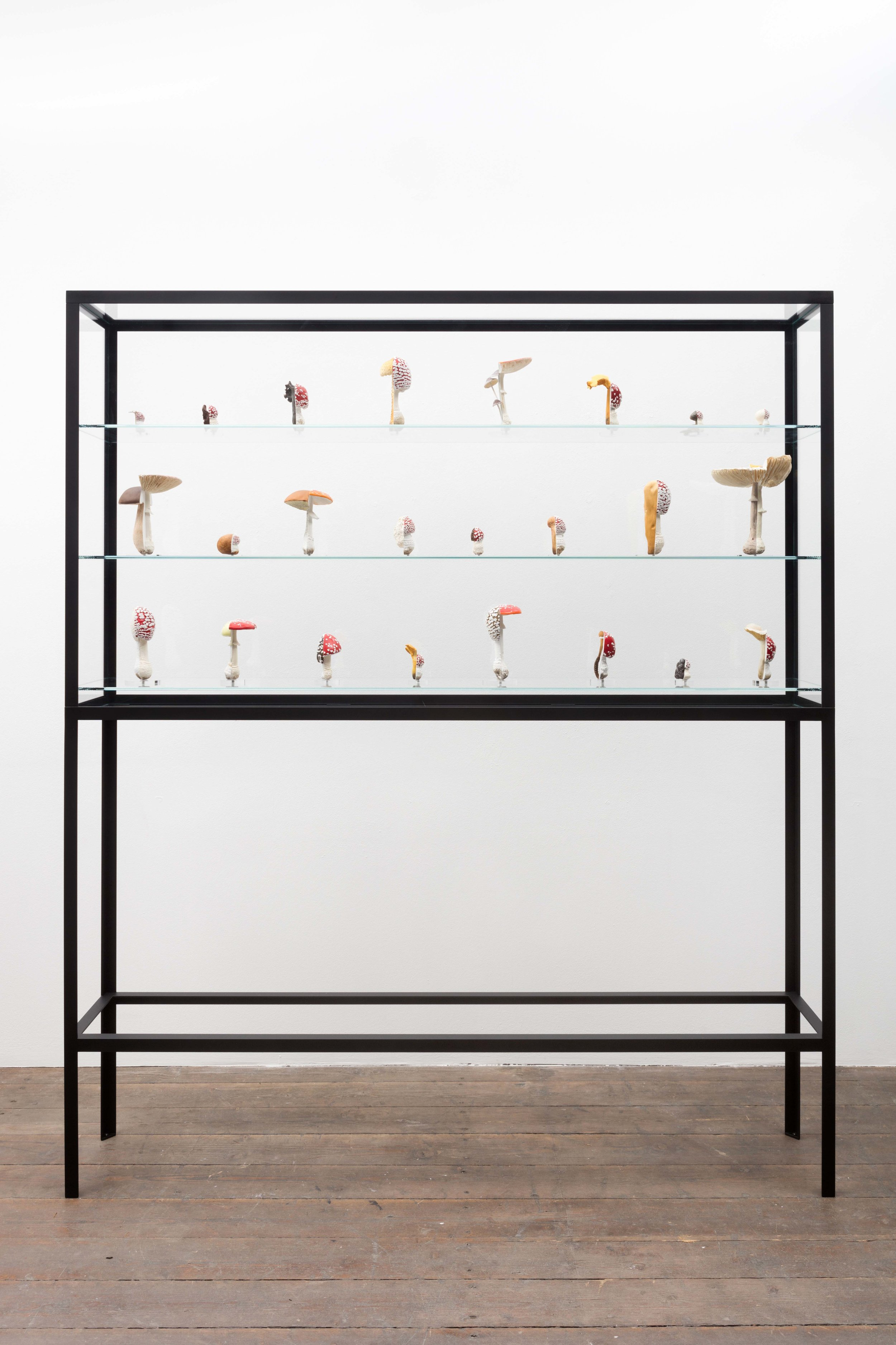 Carsten Höller   Double Mushroom Vitrine (Twenty-Fourfold)  2016 Cast polyurethane mushroom replicas in various sizes, acrylic paint, glass discs, metal pins, vitrine glass, powder-coated metal framework. Unique 145 x 175 x 25 cm