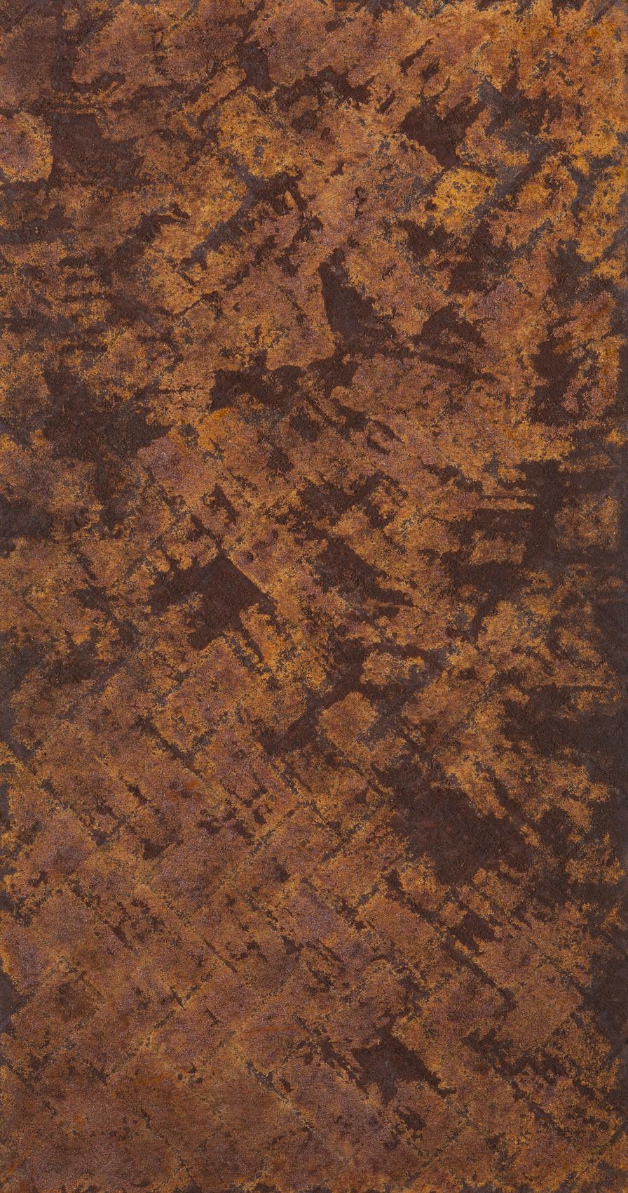 Untitled, 2016, Steel wool and rust on plywood, 150x80 cm (2).jpg
